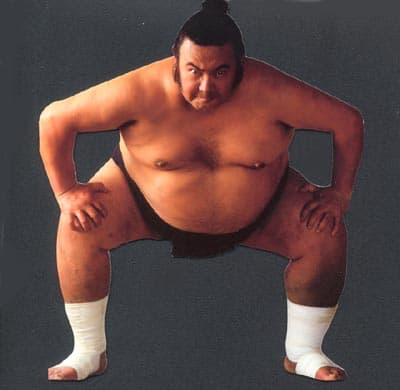 Are you eating like a Sumo Wrestler?