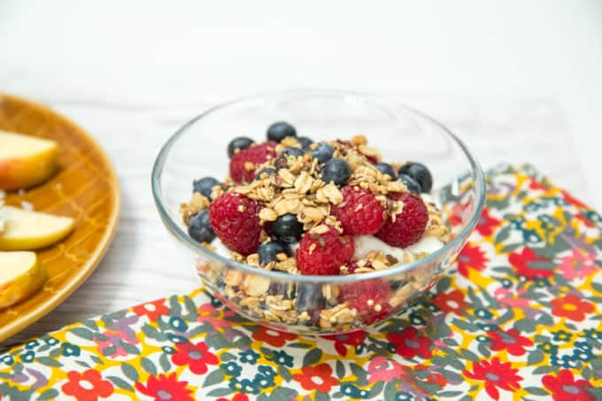 snack - bowl of yogurt with granola and berries