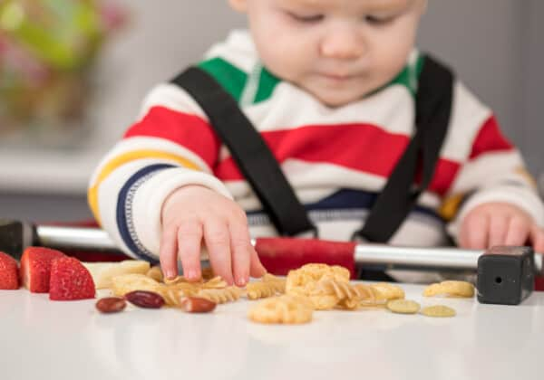Finger Foods for Babies: A Dietitian's Helpful Guide