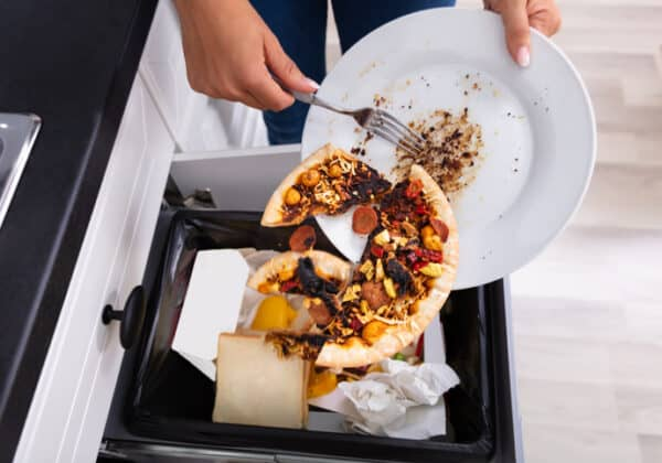 Close-up Of A Person Throwing Pepperoni Pizza On Plate In Dustbin