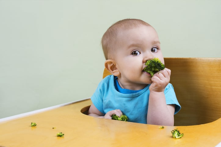 baby led weaning child holding up broccoli